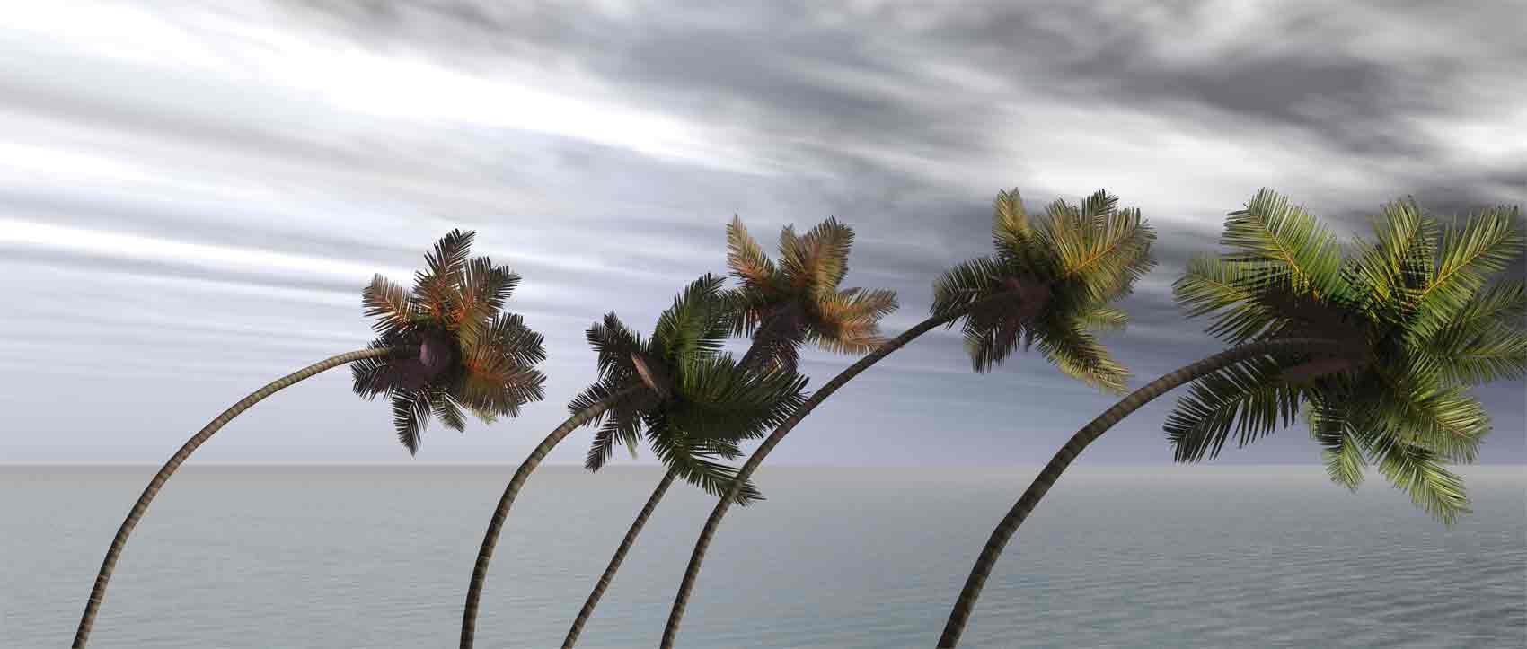 Hurricane Preparedness Week: Extreme Wind Hazards ...