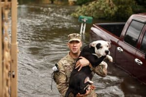 A Florida National Guardsman carries a dog to safety.